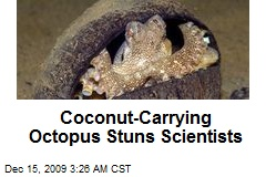 coconut-carrying-octopus-stuns-scientists